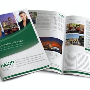 large format brochure