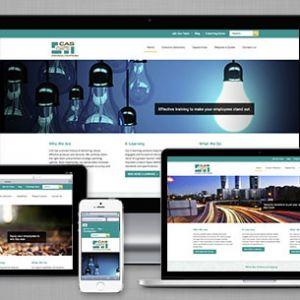 CAS Consultants website
